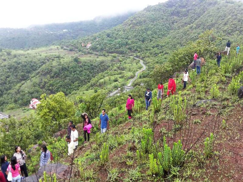 Jungle Walk at Mantra Resorts near Pune